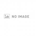 [RJ220906][human chair] 隣国出身の名門女子大生とのお貢ぎプレイ=預金&給料完全搾取♪