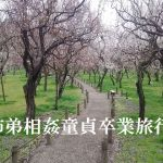 [RJ224435][官能物語] 姉弟相姦童貞卒業旅行
