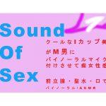 Sound Of Sex~クールなIカップ美女がM男にバイノーラルマイクをつけさせて痴女性感! 前立腺・聖水・フェラ音 高音質バイノーラル/ASMR [RJ267469][ヨルマガ!-ASMR Night Life Media-]