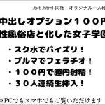 中出しオプション100円! 性風俗店と化した女子学園 [RJ274171][wordworks]