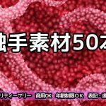 触手素材50本 [RJ278265][ART111]