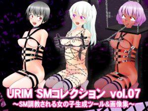 URIM_SMコレクション_vol.07 ~SM調教される女の子生成ツール&画像集~ [RJ273354][URIM]