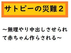 サトピーの災難2 [RJ309933][ルーマニー]
