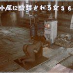 山小屋に監禁される女360° [RJ313887][AOG Project]