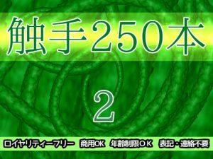 触手250本2 [RJ314729][ART111]