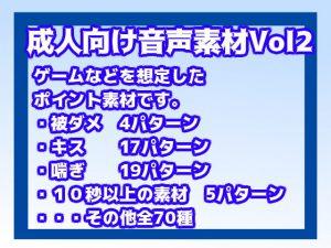 成人向け音声素材Vol2 [RJ318453][すぱらんど。]